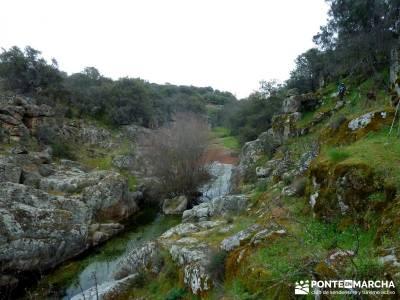 Molinos Río Perales; senderismo y montaña; viajes fines de semana; senderos madrid;arbol el tejo
